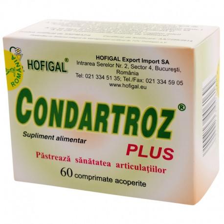 condroprotectoare pentru artroza articulațiilor mici