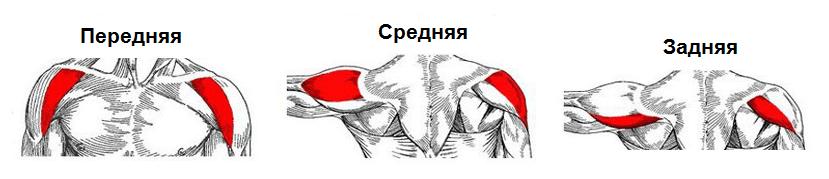 ridicarea greutății dureri articulare