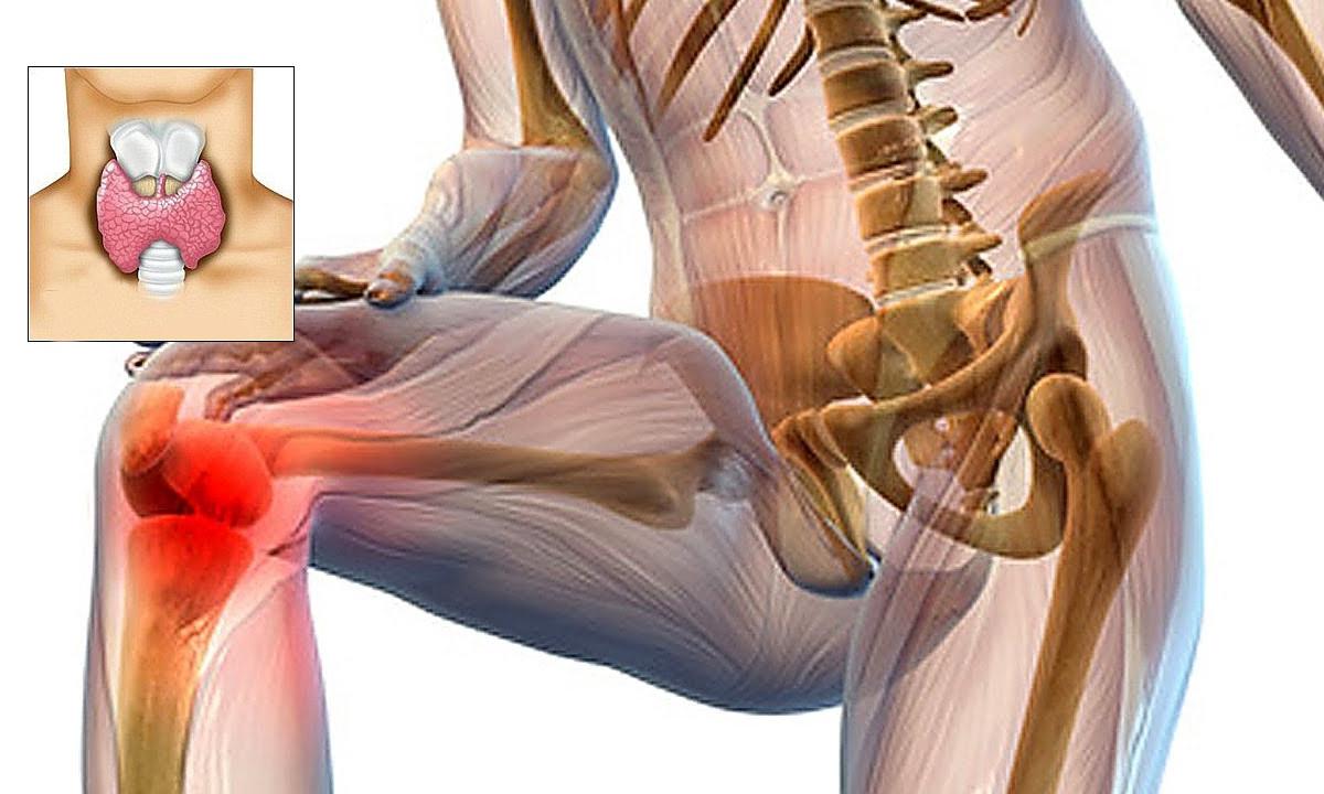 durerile articulare provoacă durere aclast medicament articular