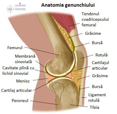durere pe suprafețele laterale ale articulației genunchiului