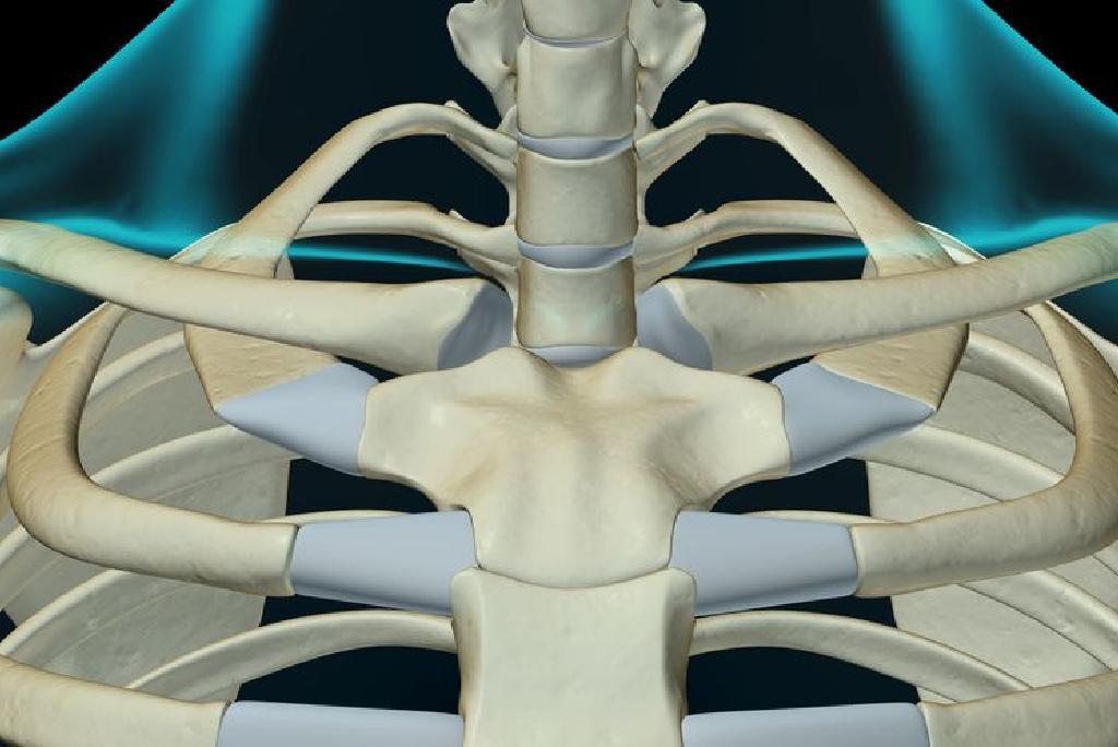 leziuni articulare sternoclaviculare articulațiile piciorului doare