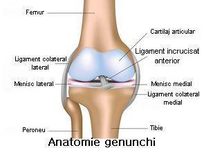 leziuni sportive ale genunchiului tratament de dezvoltare comună