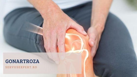 tratamentul inflamației acute a articulațiilor tratamentul artrozei genunchiului de 1 grad forum