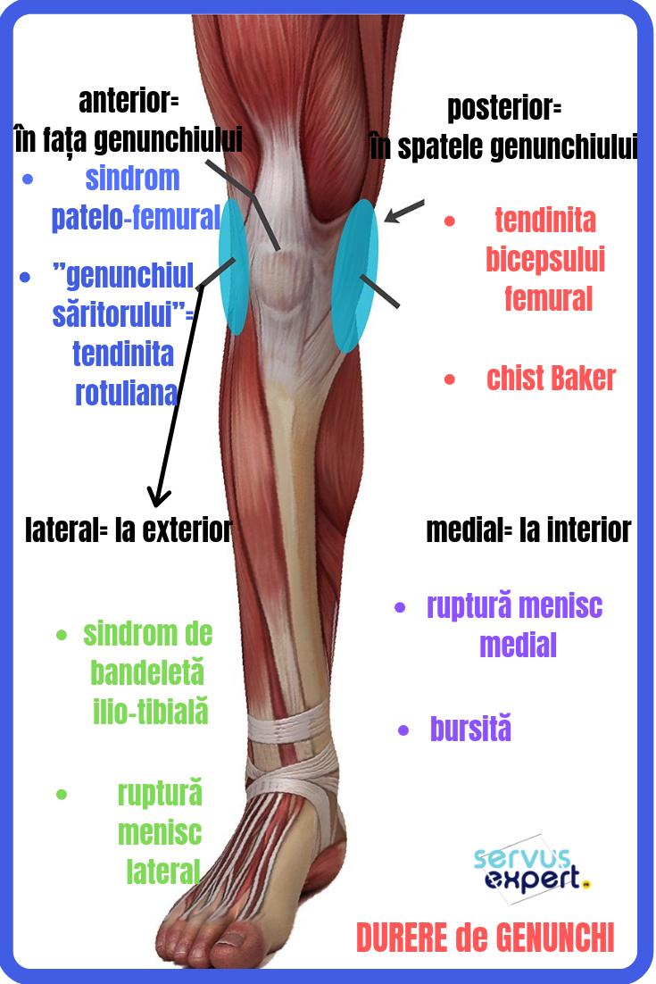 Retete pentru boli ale genunchiului, Video CSID