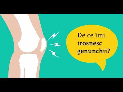 aerobic de apă pentru artroza genunchiului