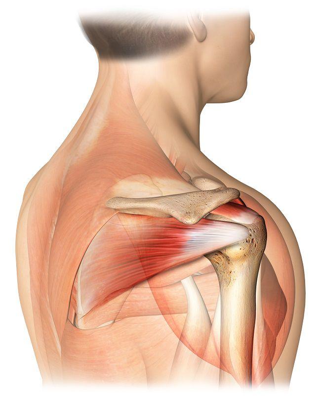 set de exerciții pentru durerile articulare există o creștere a esr pentru durerile articulare