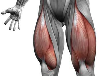șolduri ale articulației șoldului numărul de articulații la nivelul genunchiului